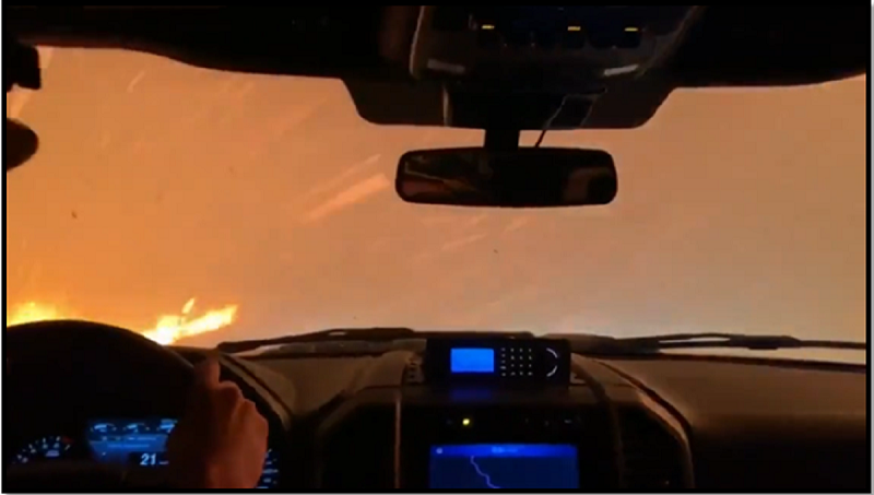 Forest Fire if you are behind the Wheel