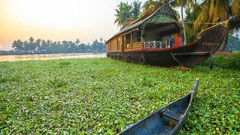 Travel-tips-for-visiting-Kerala